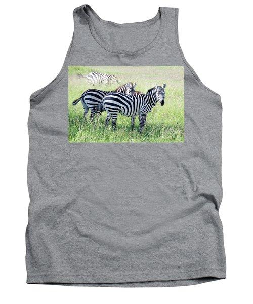 Zebras In Serengeti Tank Top