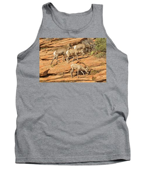 Zion Big Horn Sheep Tank Top