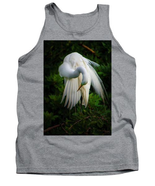 Breeding Plumage And Color Tank Top
