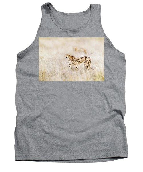 A Pair Of Cheetahs Move Steathily Through The Long Grass Of The  Tank Top