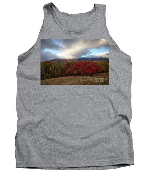 Autumn Foothills Tank Top