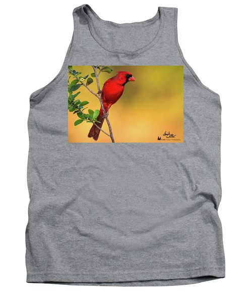 Bright Red Cardinal Tank Top