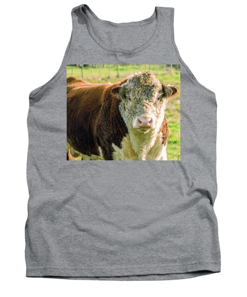 Bull In The Country Side Of Tasmania. Tank Top