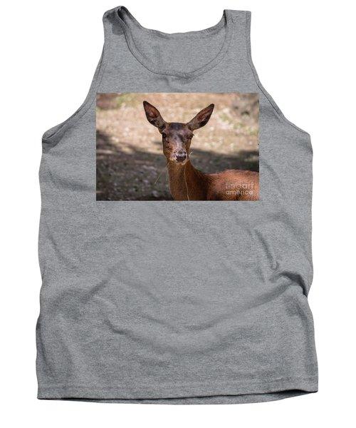 European Roe Deer Tank Top