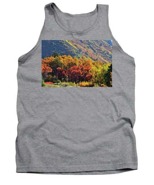 Fall Colors Along Avalanche Creek Road Tank Top