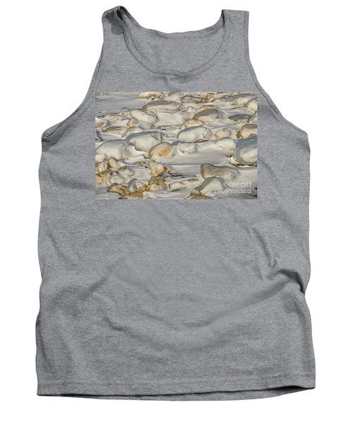 Ice Covered Snow And Sand Tank Top