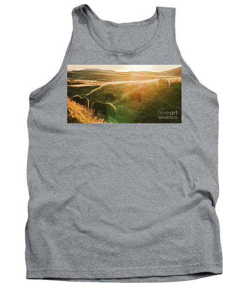 Icelandic Landscapes, Sunset In A Meadow With Horses Grazing  Ba Tank Top