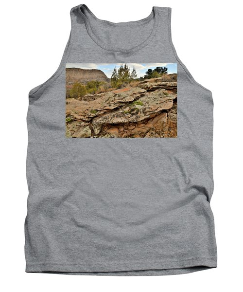 Lichen Covered Ledge In Colorado National Monument Tank Top
