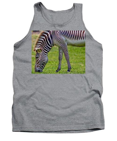 Love Zebras Tank Top