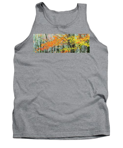 Sugar Maple Acer Saccharum In Autumn Tank Top