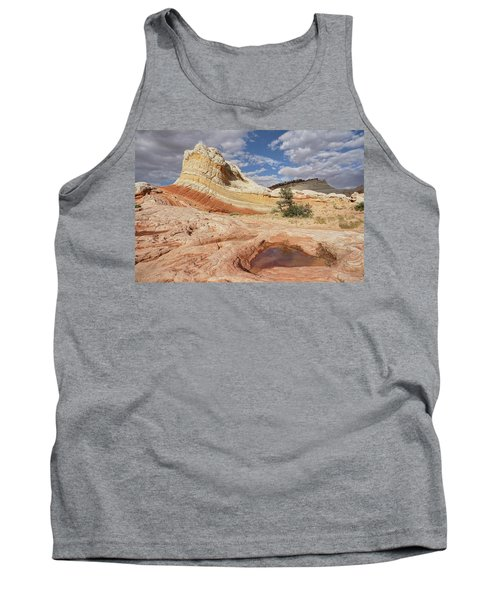 Sweeping Structures In Sandstone Tank Top