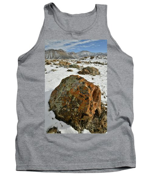 The Book Cliff's Colorful Boulders Tank Top