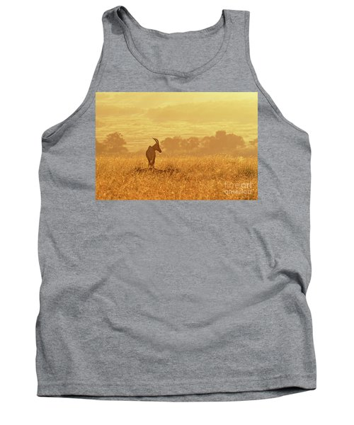 Topi In Early Morning Sunlight Tank Top