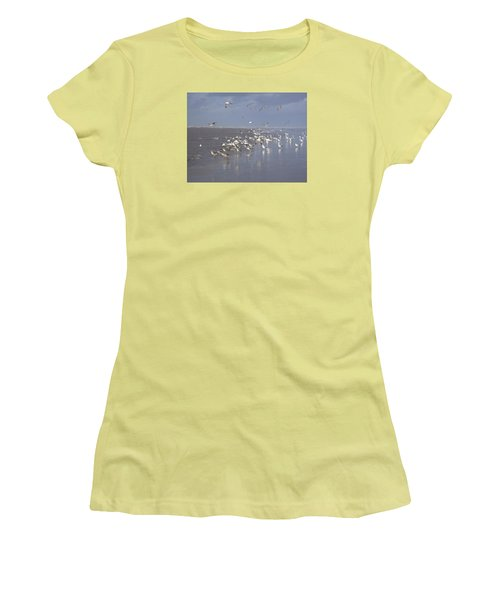 Birds At The Beach Women's T-Shirt (Athletic Fit)