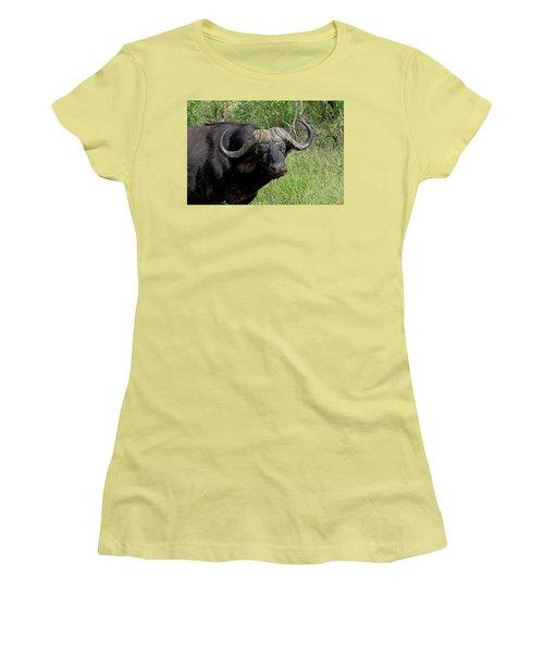 Cape Buffalo Women's T-Shirt (Junior Cut) by Tony Murtagh
