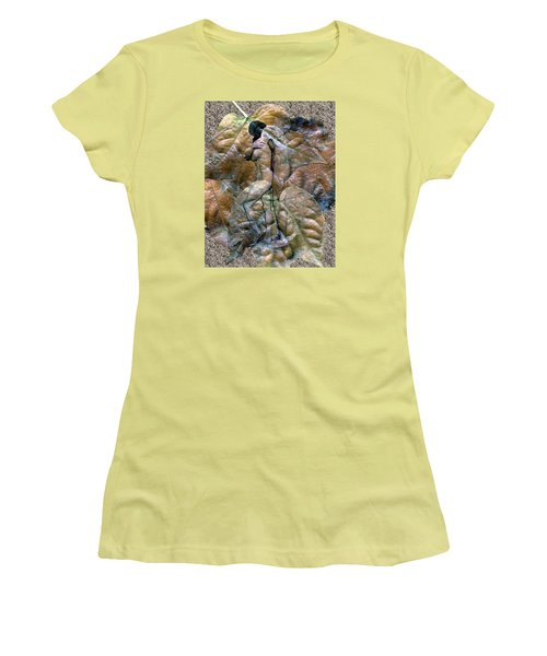 Sheltered Women's T-Shirt (Junior Cut) by Kurt Van Wagner