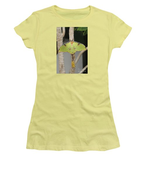 African Moon Moth Women's T-Shirt (Athletic Fit)