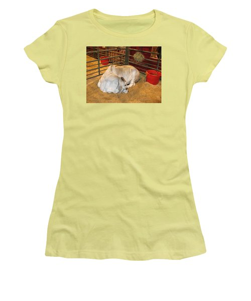 American Brahman Heifer Women's T-Shirt (Junior Cut) by Connie Fox