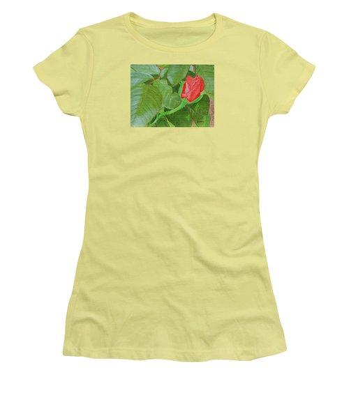 Arboretum Rose Women's T-Shirt (Athletic Fit)