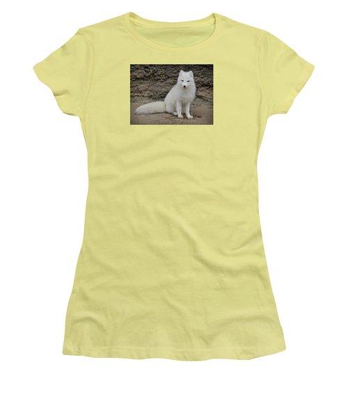 Arctic Fox Women's T-Shirt (Junior Cut) by Athena Mckinzie
