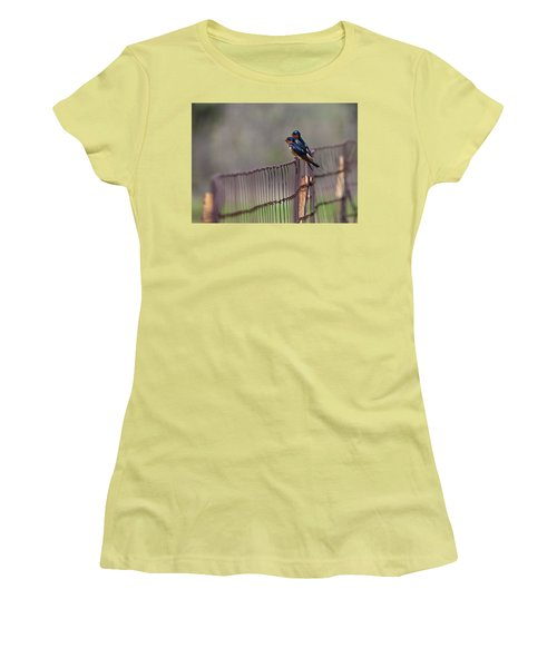 Barn Swallows On The Fence Women's T-Shirt (Junior Cut) by Mark Alder