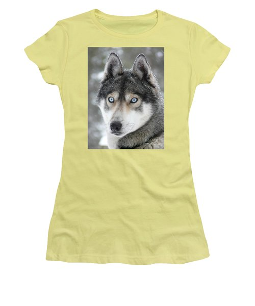 Blue Eyes Husky Dog Women's T-Shirt (Junior Cut)