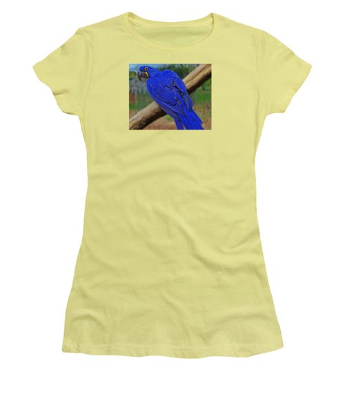 Women's T-Shirt (Junior Cut) featuring the photograph Blue Parrot by Jack Moskovita