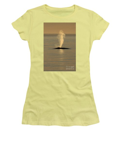 Women's T-Shirt (Junior Cut) featuring the photograph Blue Whale At Sunset In Monterey Bay California  2013 by California Views Mr Pat Hathaway Archives