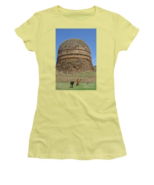 Women's T-Shirt (Junior Cut) featuring the photograph Buddhist Religious Stupa Horse And Mules Swat Valley Pakistan by Imran Ahmed