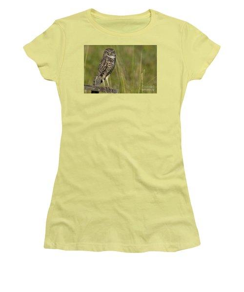 Burrowing Owl Stare Women's T-Shirt (Junior Cut) by Meg Rousher