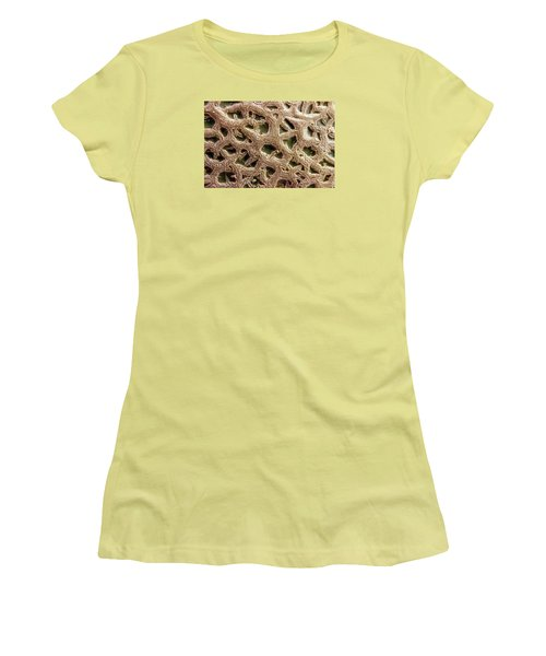 Women's T-Shirt (Junior Cut) featuring the photograph Canteloupe Macro by Sandra Foster