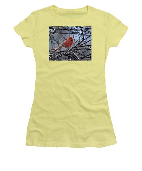 Cardinal In The Rain   Women's T-Shirt (Junior Cut) by Nava Thompson