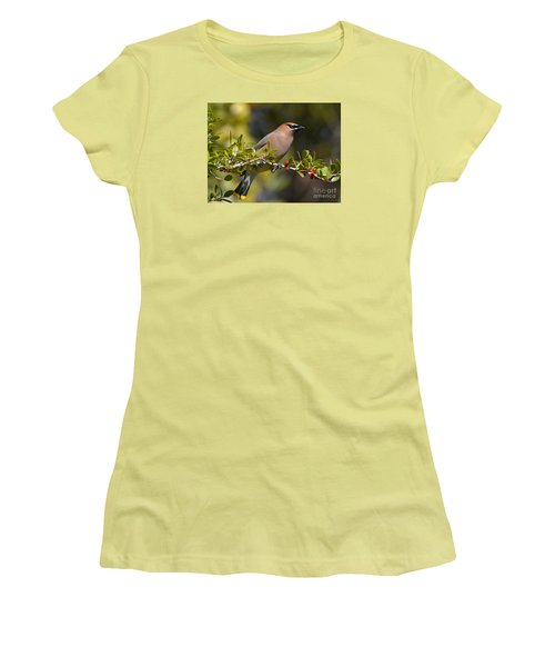 Women's T-Shirt (Junior Cut) featuring the photograph Cedar Waxwing And Red Berries by Kathy Baccari