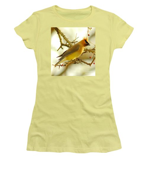 Cedar Waxwing Women's T-Shirt (Junior Cut) by Robert Frederick