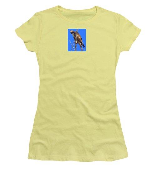 Hawk Close Up  Women's T-Shirt (Athletic Fit)