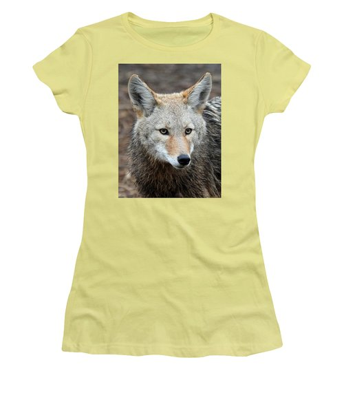 Women's T-Shirt (Junior Cut) featuring the photograph Coyote by Athena Mckinzie