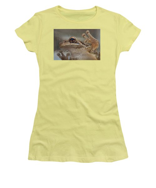 Cuban Treefrog Women's T-Shirt (Athletic Fit)