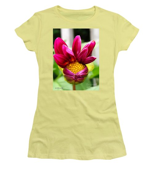 Women's T-Shirt (Junior Cut) featuring the photograph Dahlia From The Showpiece Mix by J McCombie