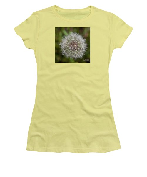 Dandelion Clock Women's T-Shirt (Athletic Fit)