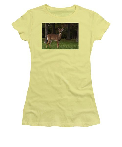 Women's T-Shirt (Junior Cut) featuring the photograph Deer In Headlight Look by Tammy Espino