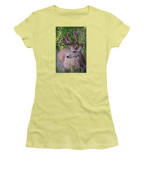Women's T-Shirt (Junior Cut) featuring the photograph Buck In The Woods by Athena Mckinzie