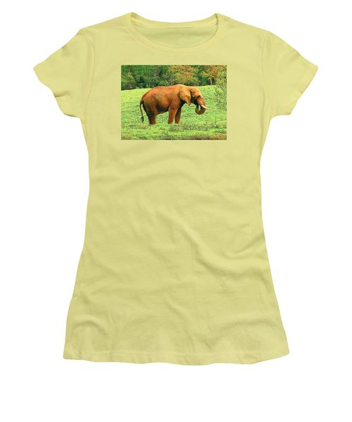 Women's T-Shirt (Junior Cut) featuring the photograph Elephant by Rodney Lee Williams