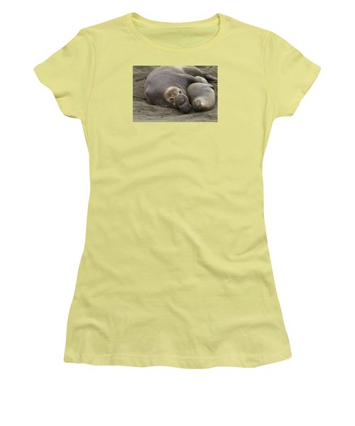 Women's T-Shirt (Junior Cut) featuring the photograph Elephant Seal Couple by Duncan Selby