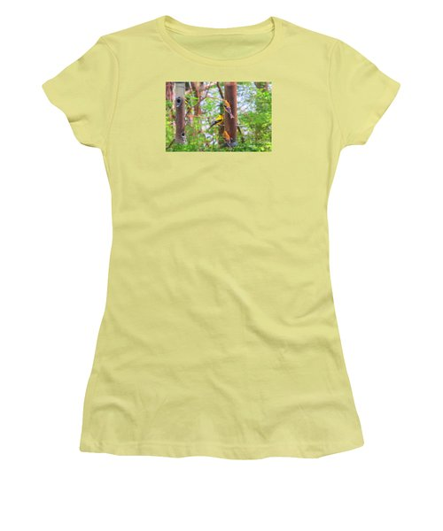 Women's T-Shirt (Junior Cut) featuring the photograph Finches Enjoying Their Snack by Tina M Wenger