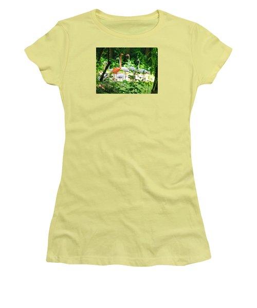 Flamingo Women's T-Shirt (Junior Cut) by Oleg Zavarzin