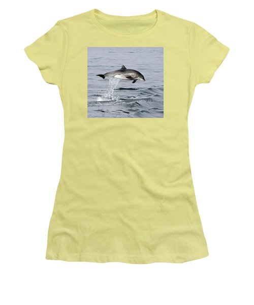 Flight Of The Dolphin Women's T-Shirt (Junior Cut) by Shoal Hollingsworth