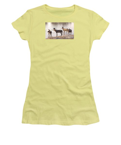 Women's T-Shirt (Junior Cut) featuring the photograph Four Alert African Wild Dogs by Liz Leyden