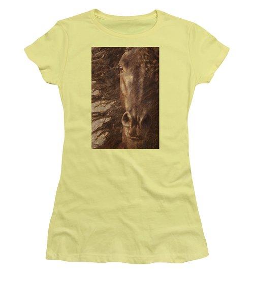 Friesian Spirit Women's T-Shirt (Athletic Fit)