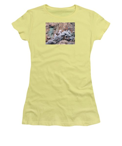 Frosted Trees Women's T-Shirt (Athletic Fit)