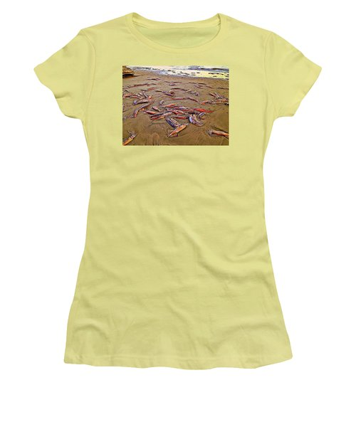 Women's T-Shirt (Junior Cut) featuring the photograph Giant Squid Capitola Beach by Antonia Citrino